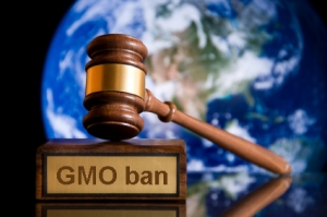 gavel-no-gmo-copy